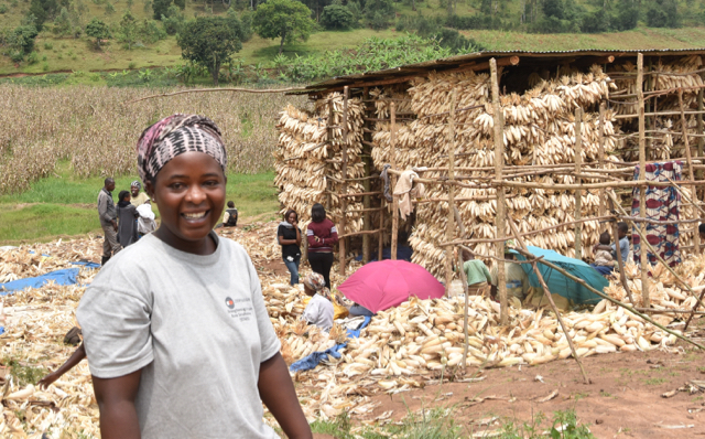 Combating Fungal Diseases in Maize Value Chain in Rwanda