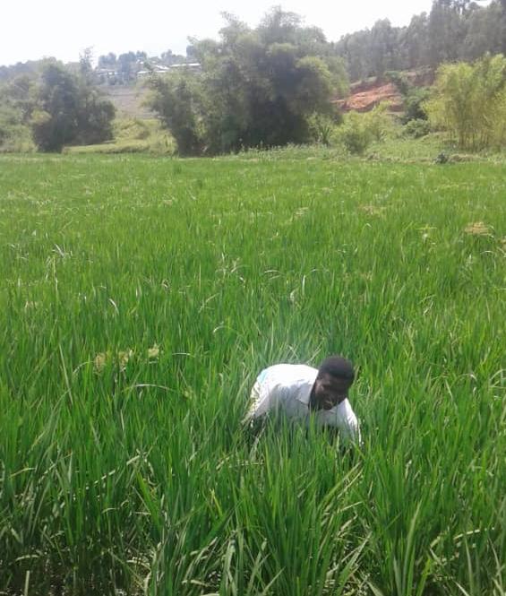 Meet the Farmer: Rose, a Determined Smallholder Farmer