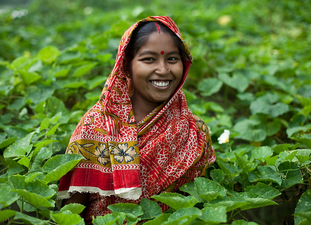 Agribusiness Booster Launched in Bangladesh