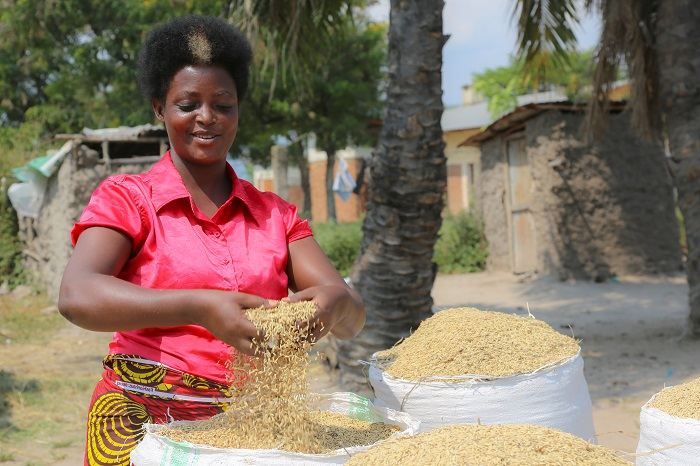 Rural Women in Burundi, Indispensable Partners in the Fight Against Poverty