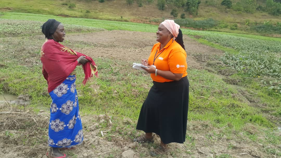 Access to Finance for Smallholder Farmers Contributes to Food Security