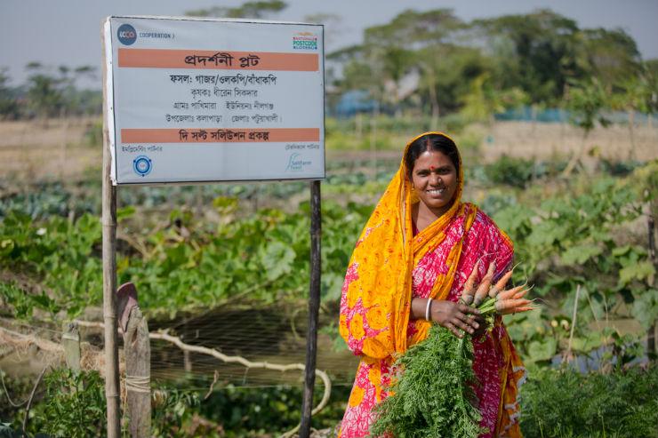 First Harvest of Salt-Tolerant Vegetables in Bangladesh