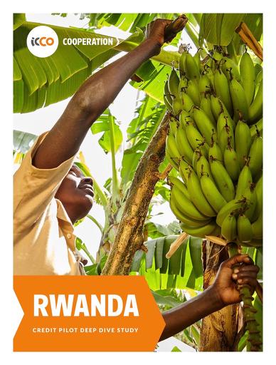 STARS Rwanda pdf