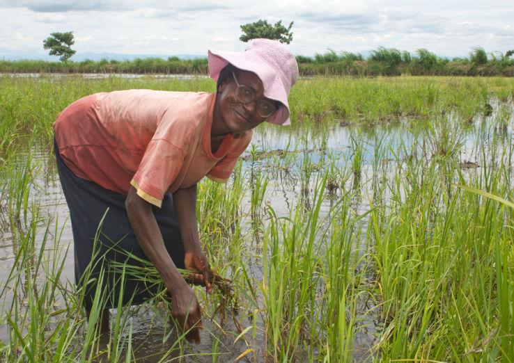 Grow the Farmer. Feed the Planet. Meet Chancy Mhango.