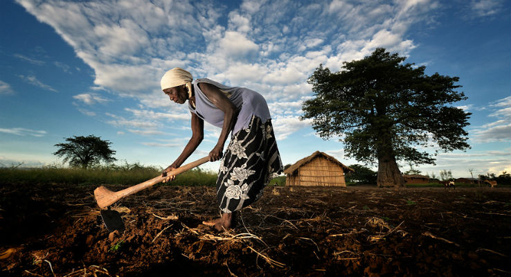 How to Measure Impact on Food and Nutrition Security