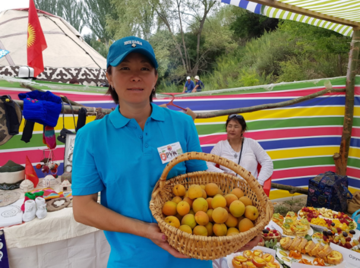 Opportunities for Kyrgyz' Apricots
