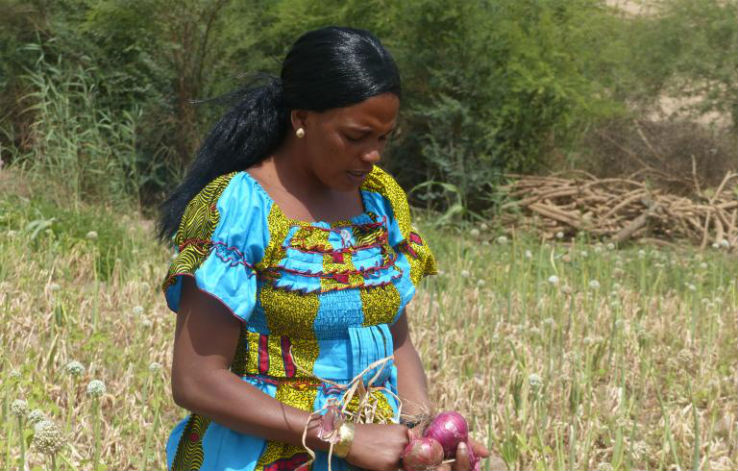 Strong Women, Strong Farms: Empowering Female Smallholders through Access to Finance
