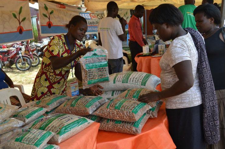 Uganda: Better Seeds for Better Production
