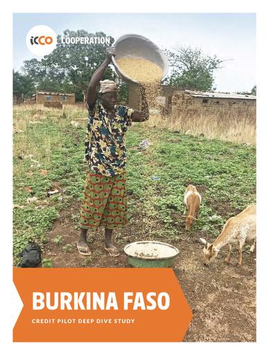 STARS BurkinaFaso pdf
