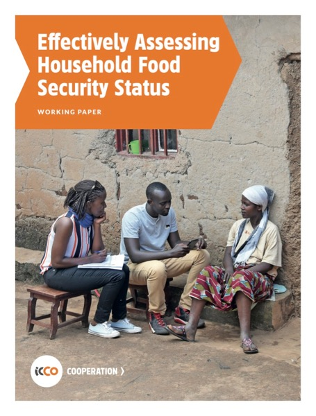 Effectively Assessing Household Food Security Status