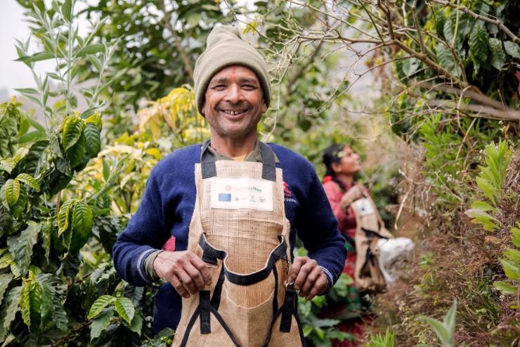 'Hamro Coffee' improves Farming Practices in Nepal