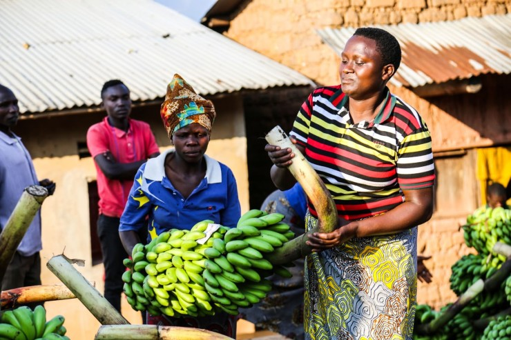 Agriculture in Burundi Needs Access to Finance
