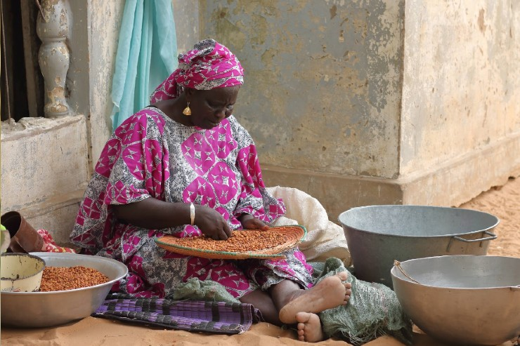 Developing Climate-Resilient Cowpea Value Chain in Senegal