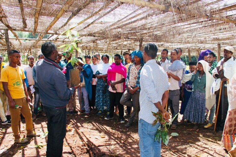training of farmers ethiopia