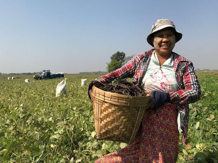 Women Land Laborers Become Entrepreneurs in Off-Season