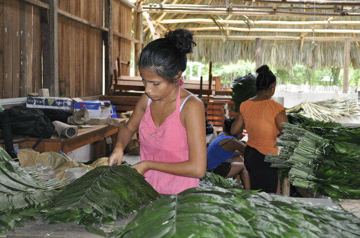 Communities in Peten livelihood opportunities