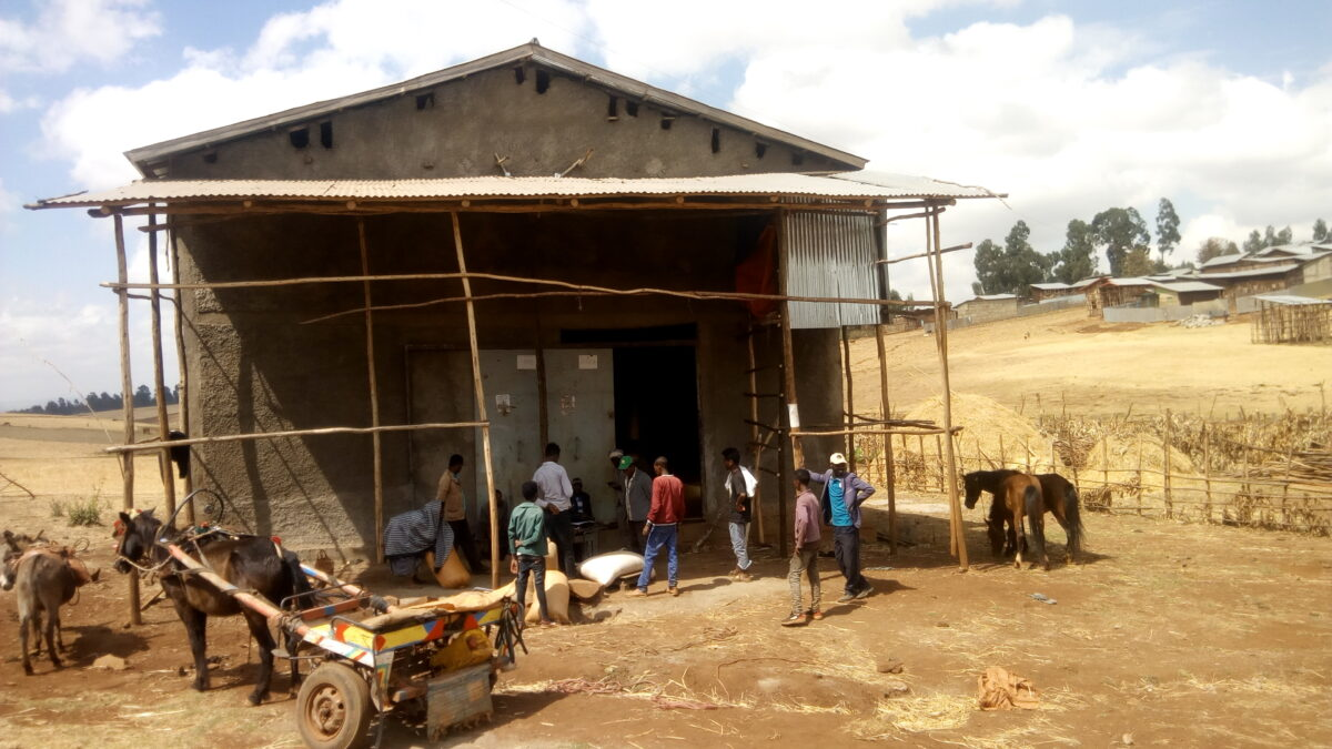 Providing Ethiopian Farmers with Access to Storage and Inputs
