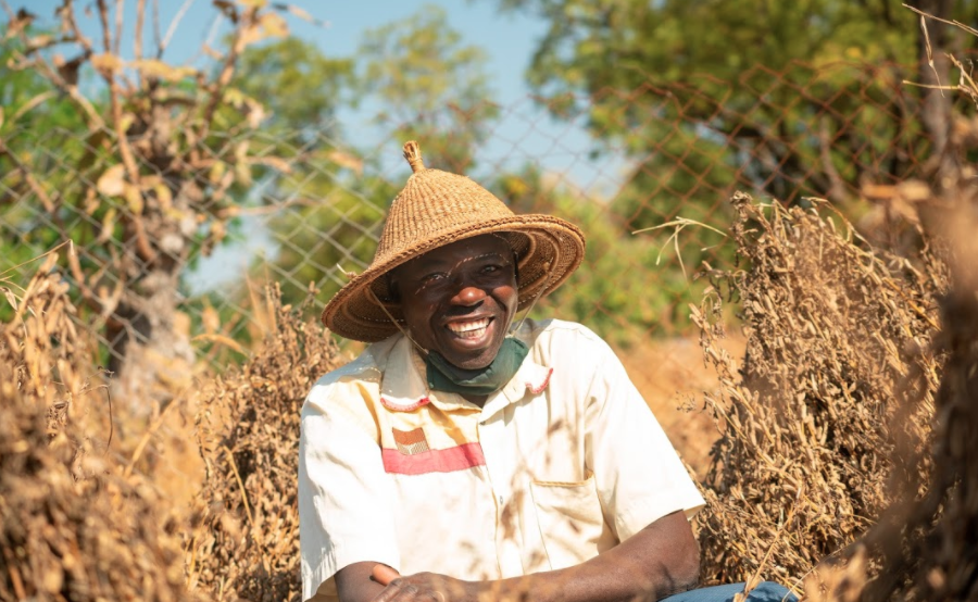 Providing Business Opportunities for Sesame Farmers in Burkina Faso