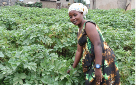 Empowering Youth in Rwanda to Become Successful Agri-preneurs