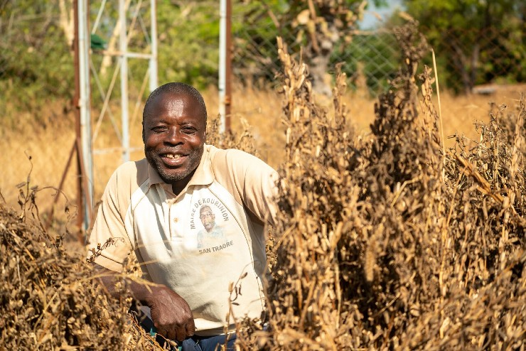 Perspectives for farmers and small agri-businesses in West Africa