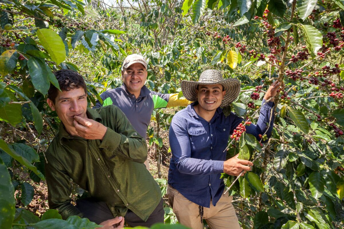 Connections between rural and urban will offer better opportunities to youth and peasants in Latin America