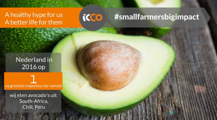 Hoe zorgen we dat de avocado-boer in ontwikkelingslanden meeprofiteert van onze hype?