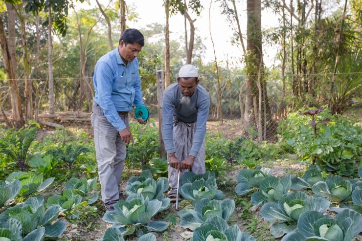 Nieuw trainingscentrum zilte landbouw in Bangladesh