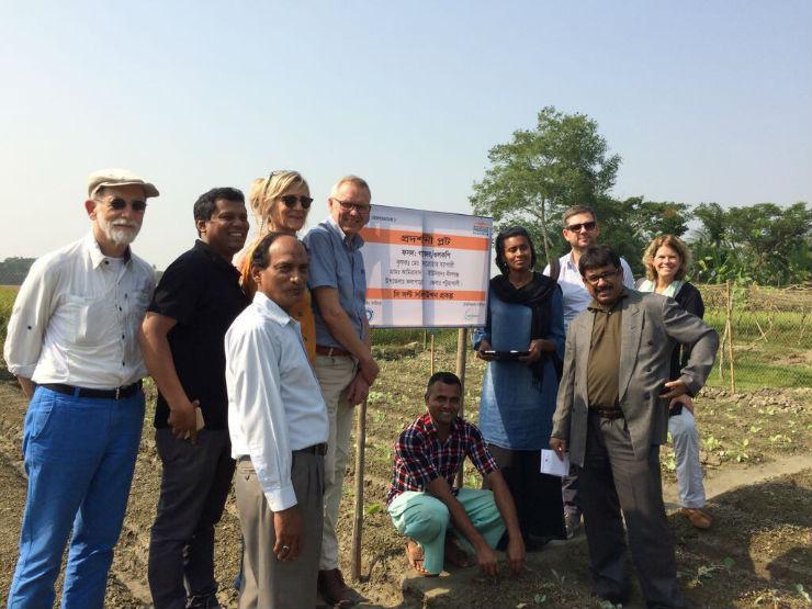 ICCO en Salt Farm Texel introduceren zouttolerante gewassen in Bangladesh