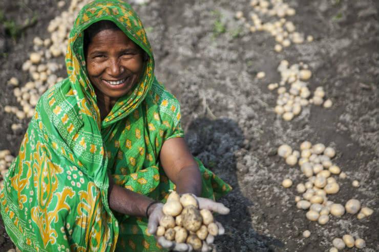 Zilte landbouw als oplossing voor wereldwijd probleem