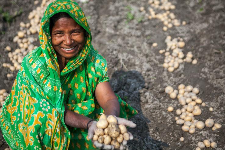 Zilte landbouw creëert nieuwe kansen in Bangladesh