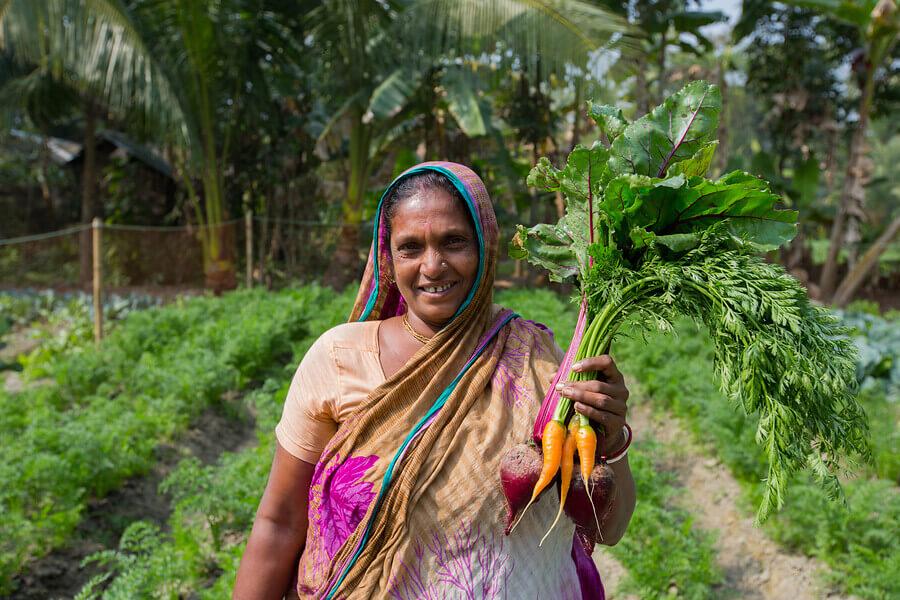 Slimme landbouw op de zoute gronden van Bangladesh